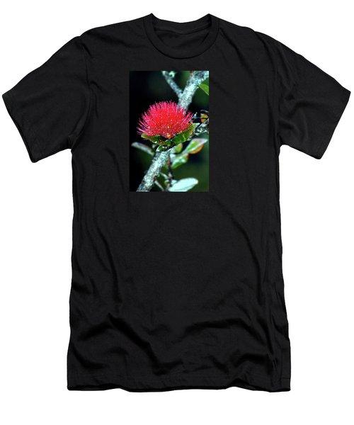 Red Lehua  Kawaiko'olihilihiokalikolehua Men's T-Shirt (Athletic Fit)