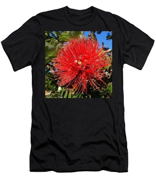 Red Lehua Men's T-Shirt (Slim Fit) by Pamela Walton