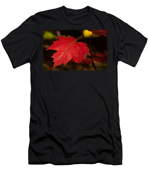 Red Maple Leaf In Fall Men's T-Shirt (Athletic Fit)