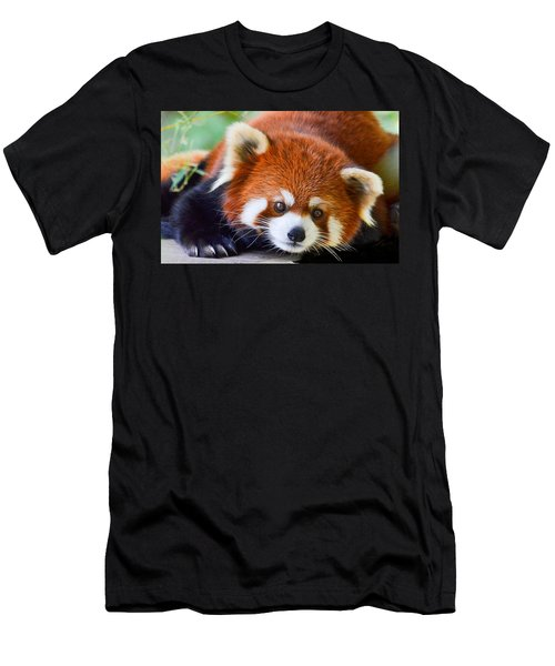 Men's T-Shirt (Athletic Fit) featuring the photograph Red Panda by Michael Hubley