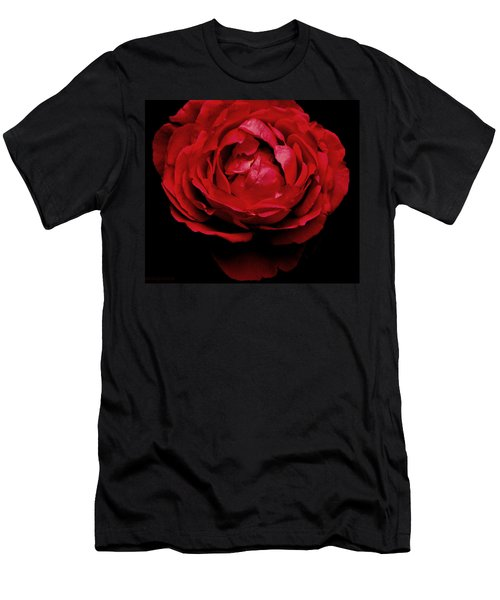 Men's T-Shirt (Slim Fit) featuring the photograph Red Rose by Charlotte Schafer