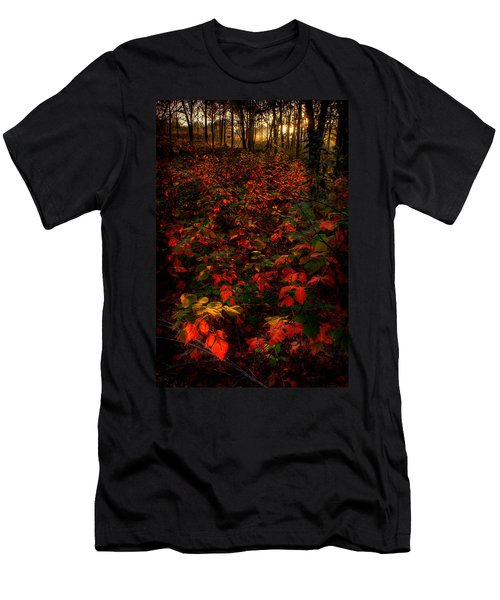Red Sumac Men's T-Shirt (Athletic Fit)