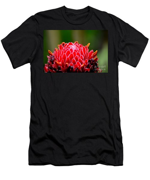 Red Torch Ginger Flower Head From Tropics Singapore Men's T-Shirt (Athletic Fit)