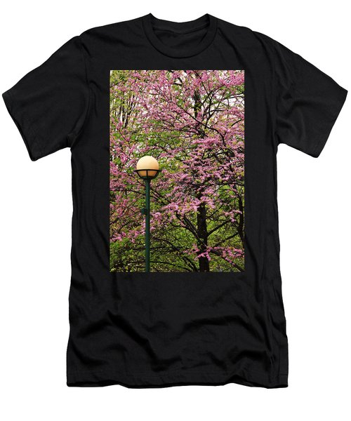 Redbud And Lamp Men's T-Shirt (Athletic Fit)