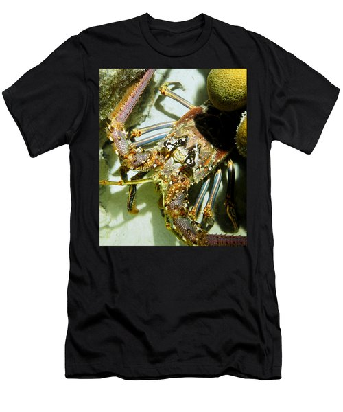Reef Lobster Close Up Spotlight Men's T-Shirt (Slim Fit) by Amy McDaniel