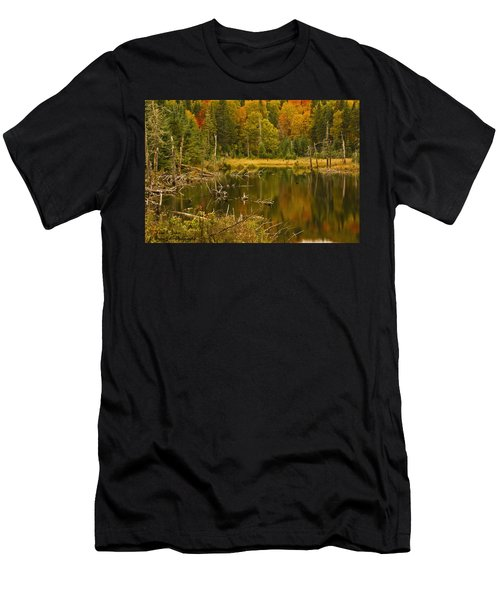 Reflections Of The Fall Men's T-Shirt (Athletic Fit)