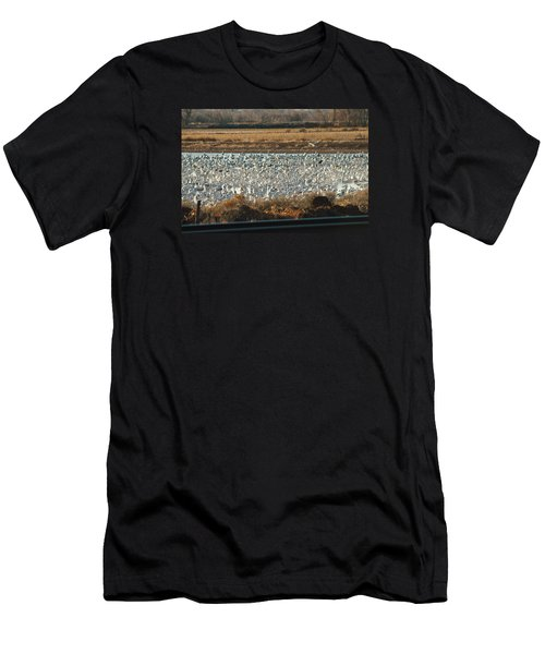 Refuge View 3 Men's T-Shirt (Slim Fit) by James Gay