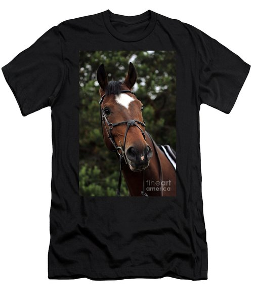 Regal Horse Men's T-Shirt (Athletic Fit)