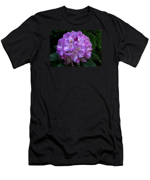 Rhododendron ' Roseum Elegans '  Men's T-Shirt (Slim Fit)