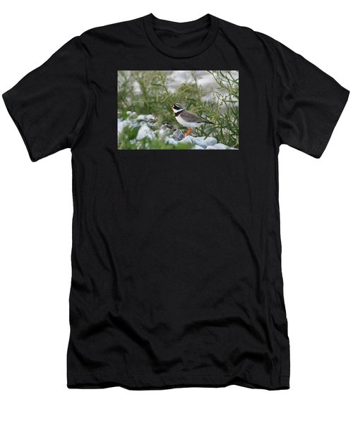 Ringed Plover On Rocky Shore Men's T-Shirt (Athletic Fit)