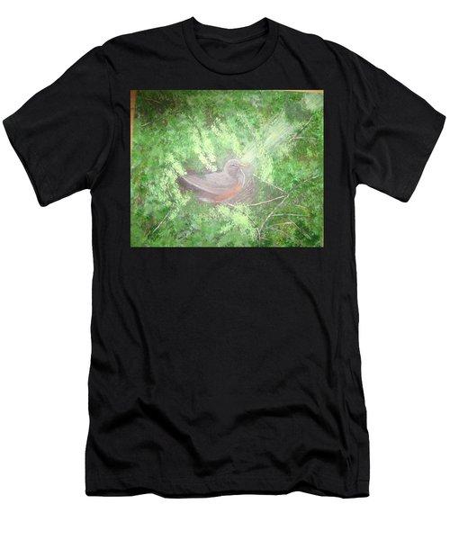 Robin On Her Nest Men's T-Shirt (Athletic Fit)