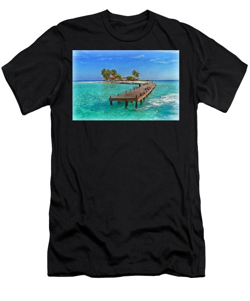 Robinson Island Men's T-Shirt (Athletic Fit)
