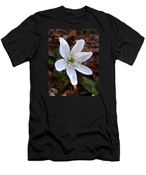 Wild Round-lobe Hepatica Men's T-Shirt (Slim Fit) by William Tanneberger