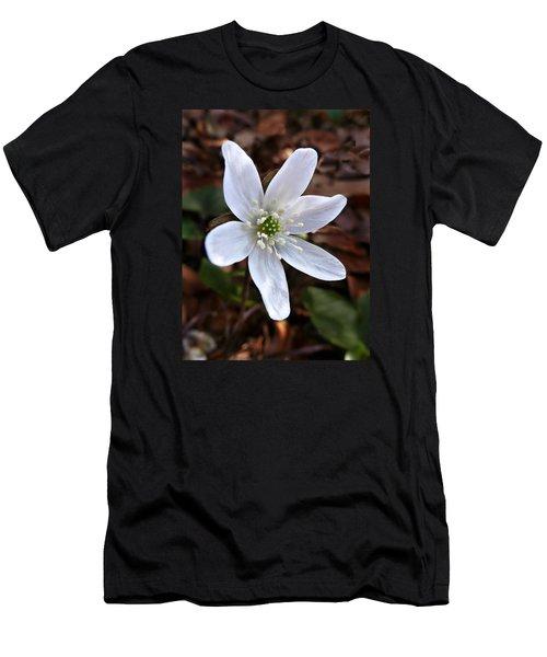 Wild Round-lobe Hepatica Men's T-Shirt (Slim Fit)