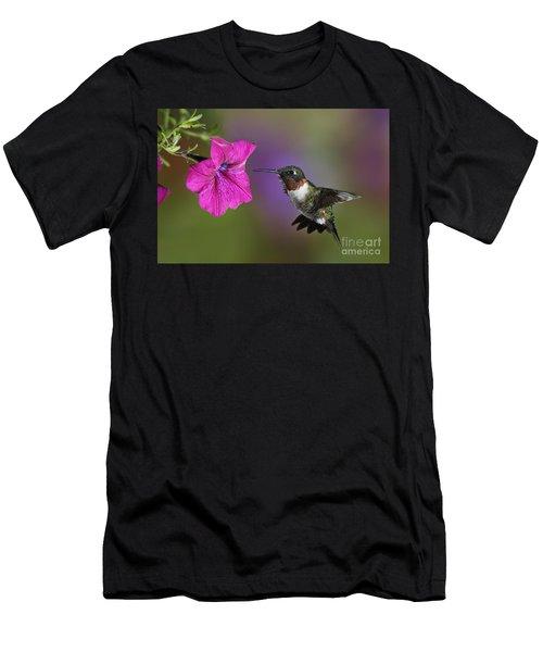 Ruby-throated Hummingbird - D004190 Men's T-Shirt (Slim Fit) by Daniel Dempster