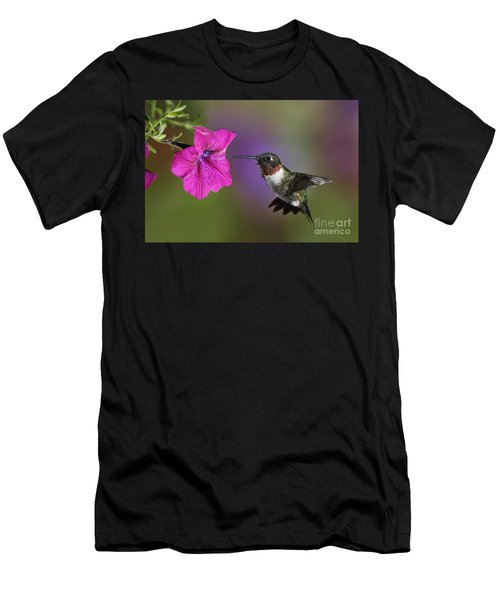 Ruby-throated Hummingbird - D004190 Men's T-Shirt (Athletic Fit)