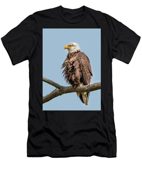 Ruffled Feathers Bald Eagle Men's T-Shirt (Athletic Fit)