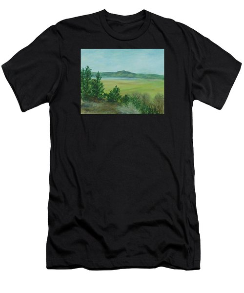Rural Landscape Art Original Colorful Oil Painting Swan Lake Oregon  Men's T-Shirt (Athletic Fit)