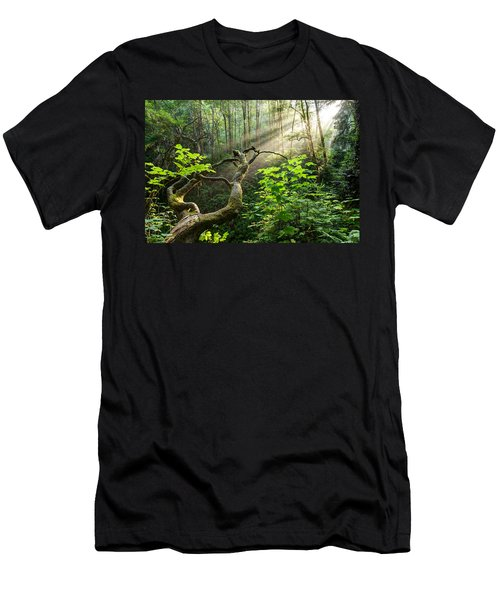 Men's T-Shirt (Athletic Fit) featuring the photograph Sacred Grove by Dustin  LeFevre