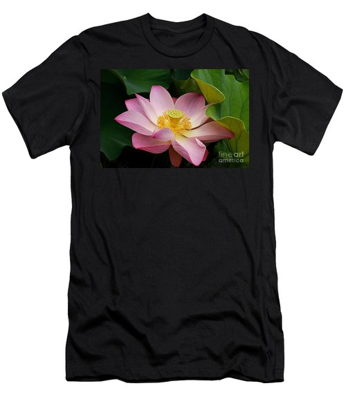 Men's T-Shirt (Athletic Fit) featuring the photograph Sacred Lotus by Byron Varvarigos