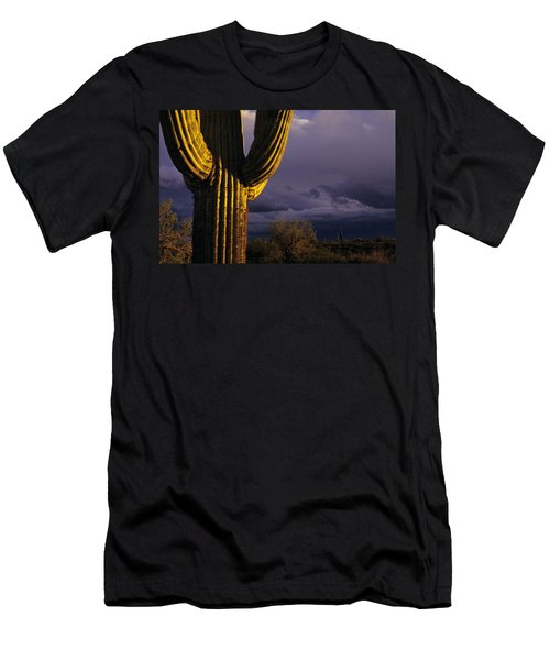 Saguaro Cactus Sunset At Dusk Arizona State Usa Men's T-Shirt (Athletic Fit)