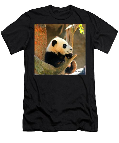 San Diego Zoo Panda Bear Xiao Liwu Men's T-Shirt (Athletic Fit)