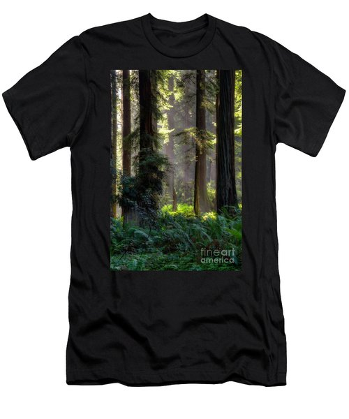 Sanctuary 2 Men's T-Shirt (Slim Fit) by Mark Alder