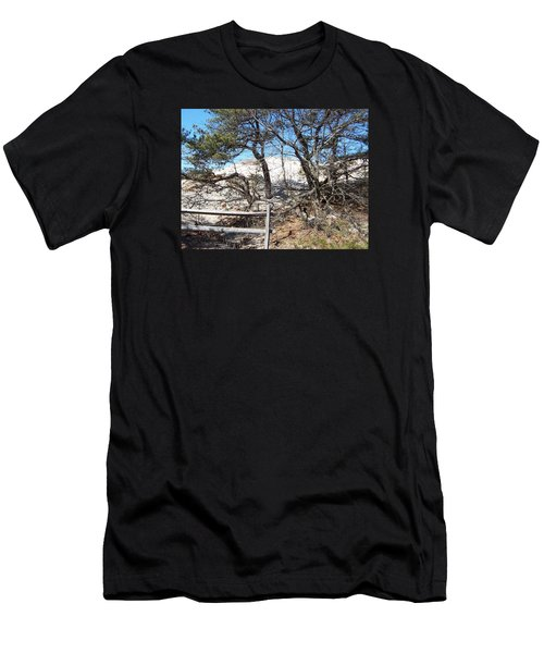 Sand Dune With Trees Men's T-Shirt (Slim Fit) by Catherine Gagne