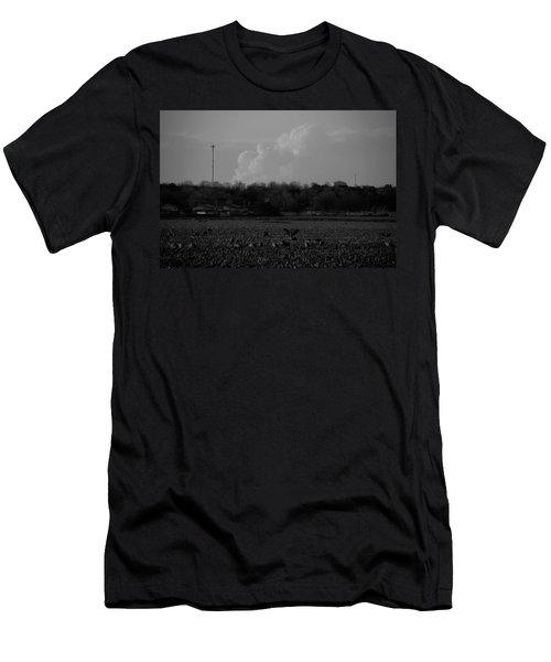Sand Hill Cranes With Nebraska Thunderstorm Men's T-Shirt (Athletic Fit)