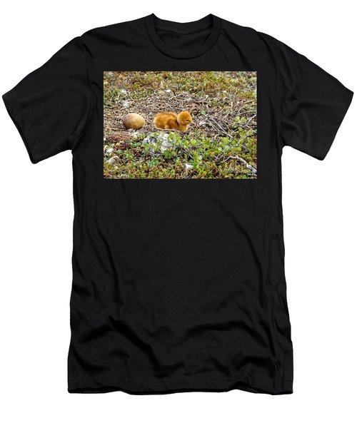 Sandhill Crane Chick Men's T-Shirt (Athletic Fit)