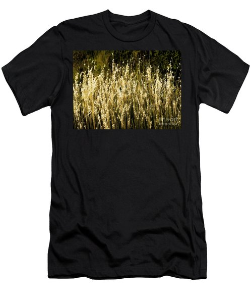 Santa Fe Grasses Men's T-Shirt (Athletic Fit)