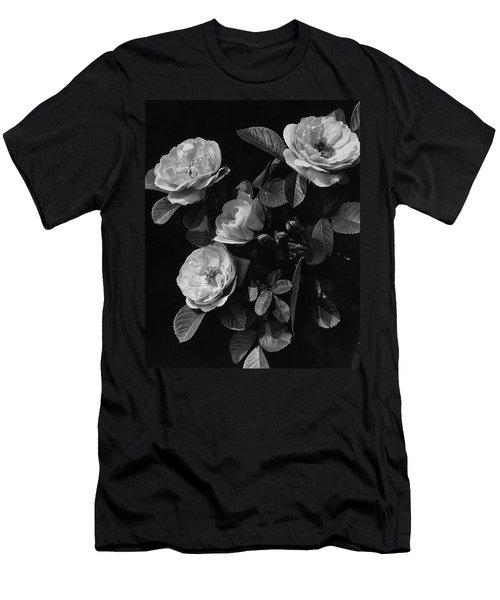 Sarah Van Fleet Variety Of Roses Men's T-Shirt (Athletic Fit)