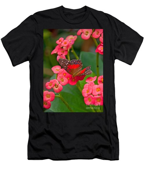 Scarlet Swallowtail Butterfly On Crown Of Thorns Flowers Men's T-Shirt (Athletic Fit)