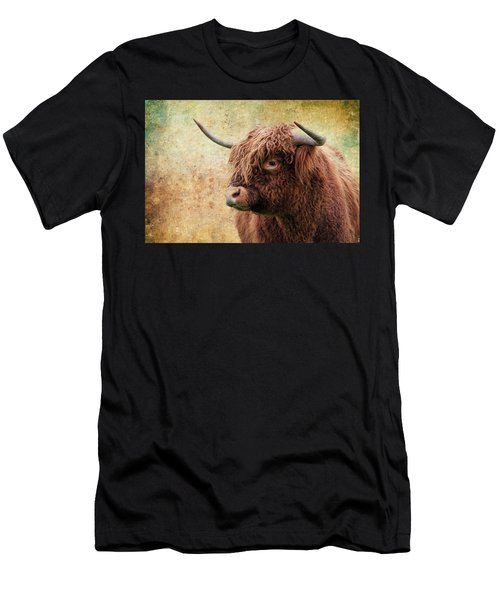 Scottish Highland Steer Men's T-Shirt (Athletic Fit)