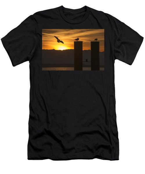 Seagull In The Sunset Men's T-Shirt (Slim Fit) by Chevy Fleet