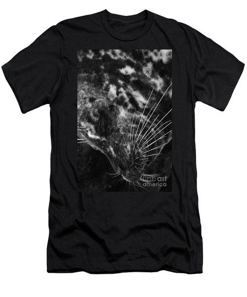 Seal Solitude Men's T-Shirt (Athletic Fit)