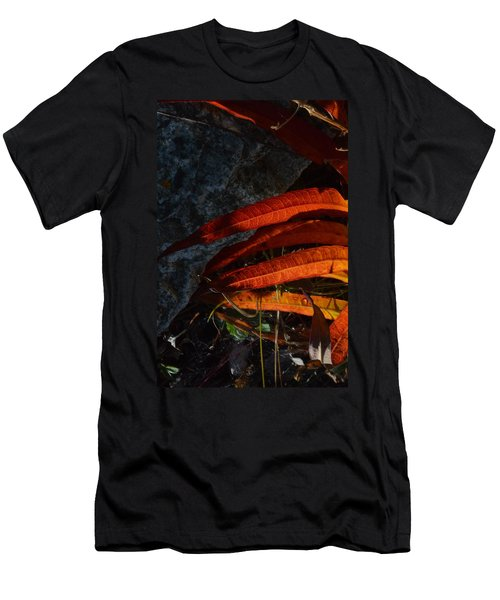 Seasonal Color Theory Men's T-Shirt (Slim Fit) by Brian Boyle