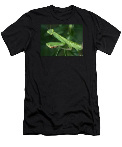 Seeing Green Men's T-Shirt (Athletic Fit)
