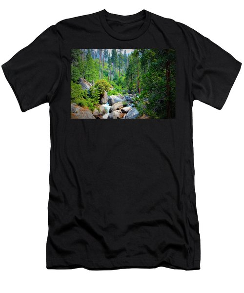 Sequoia Stream Men's T-Shirt (Athletic Fit)