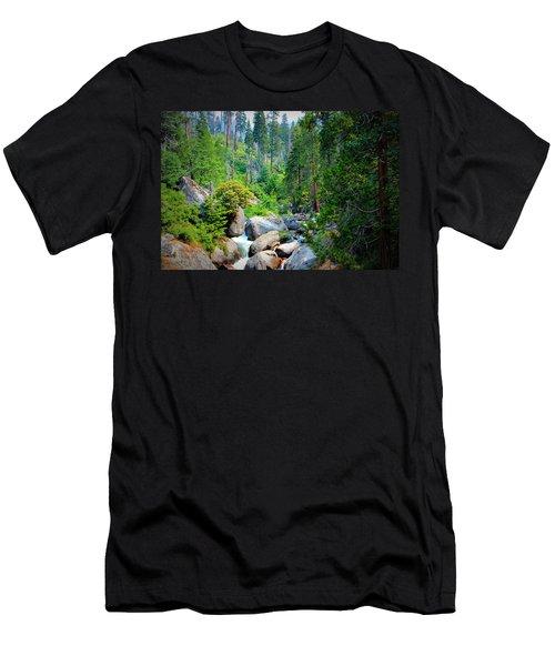Sequoia Stream Men's T-Shirt (Athletic Fit)