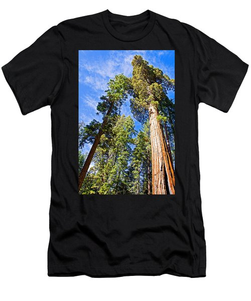 Sequoias Reaching To The Clouds In Mariposa Grove In Yosemite National Park-california Men's T-Shirt (Athletic Fit)