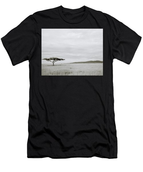 Serengeti Acacia Tree  Men's T-Shirt (Slim Fit) by Shaun Higson