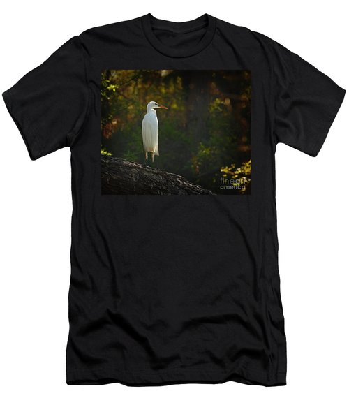 Shadow Heron Men's T-Shirt (Athletic Fit)