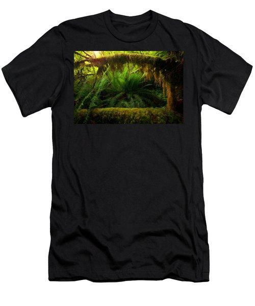 Sheltered Fern Men's T-Shirt (Athletic Fit)