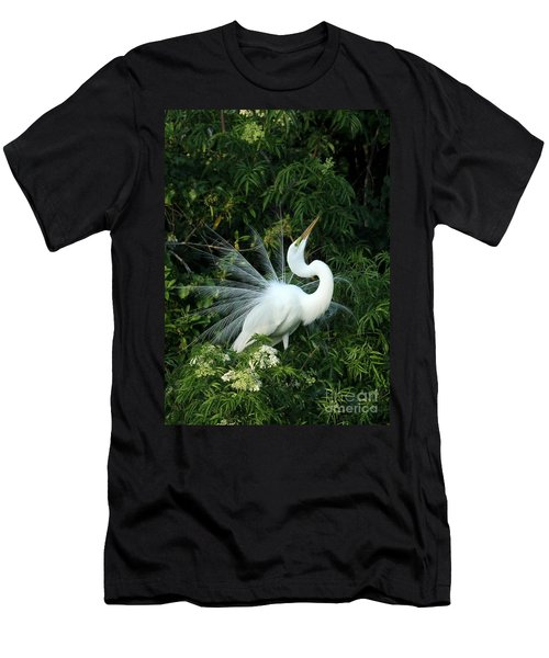 Showy Great White Egret Men's T-Shirt (Athletic Fit)
