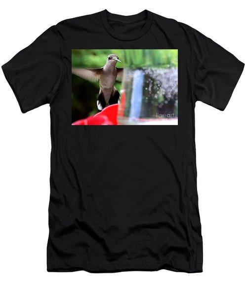 Shy Hummingbird Men's T-Shirt (Athletic Fit)