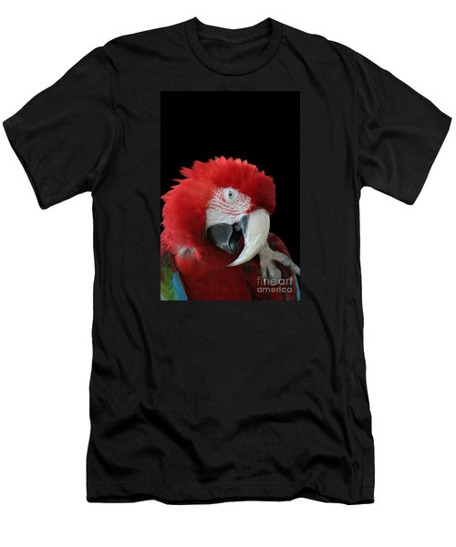 Shy Macaw Men's T-Shirt (Slim Fit) by Judy Whitton