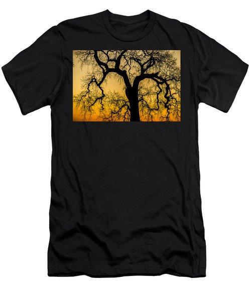 Silhouette Oak Men's T-Shirt (Athletic Fit)