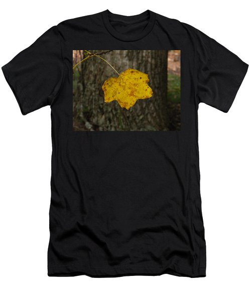 Men's T-Shirt (Slim Fit) featuring the photograph Single Poplar Leaf by Nick Kirby