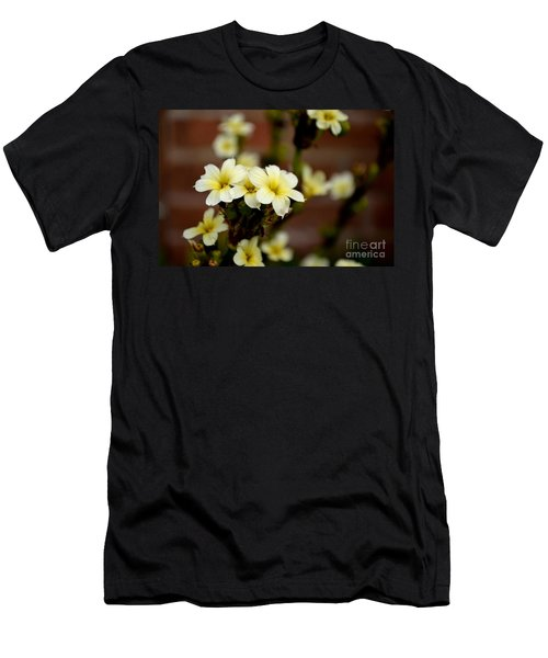 Sisyrinchium Striatum Men's T-Shirt (Athletic Fit)